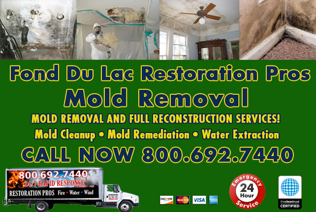 Fond Du Lac mold damage cleanup